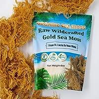 Organic Sea Moss Dried Irish Sea Moss - Natural Wildcrafted, Pure, Non-GMO & Gluten-Free Sea Moss - Makes Perfect 5 Jars…