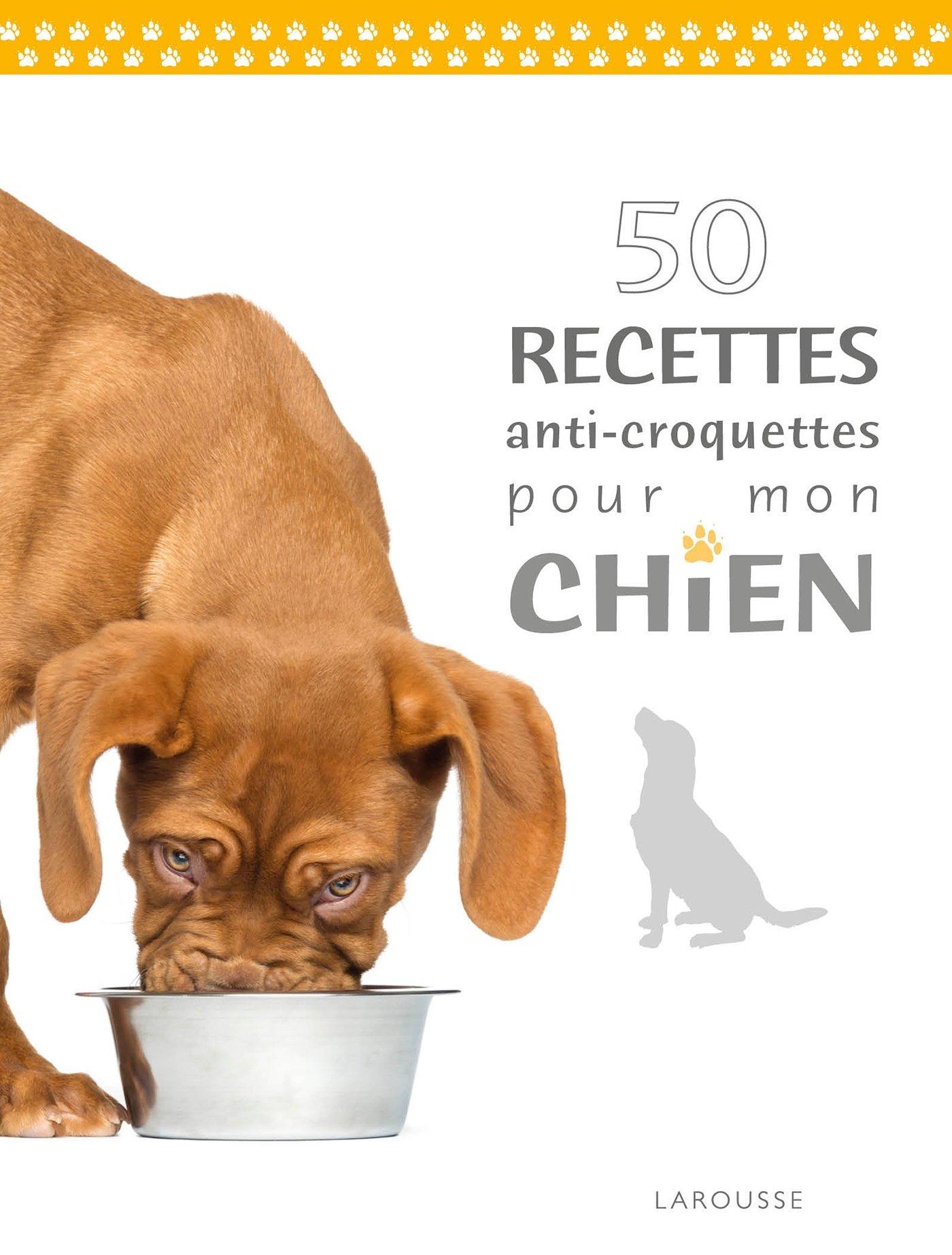Croquettes ou repas maison chien ventana blog - Croquette pour chien fait maison ...