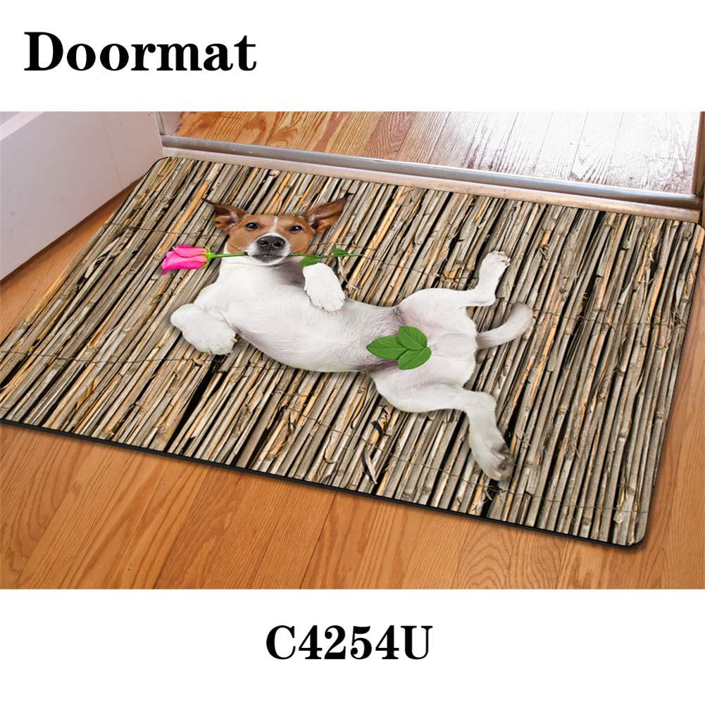 HUGS IDEA Interesting Animal Pattern Doormat Kitchen Floor Runner Floor Mat Entryways Rugs Home Decor Carpet