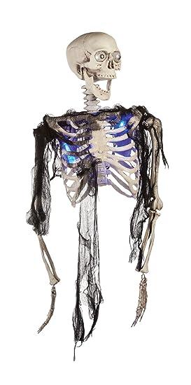 Amazon Morbid Enterprises Blue Half Body Skeleton Halloween Decor Multi One Size Home Kitchen