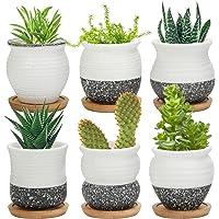 Succulent Pots, Laerjin 2.5 inch Mini Succulent Plant Pots, Set of 6 Ceramic Flower Planter Pot with Bamboo Tray…