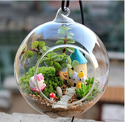 Amazon Transparent Ball Globe Shape Clear Hanging Glass Vase