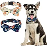 EXPAWLORER Floral Dog Collar with Detachable Bow Tie - 2 Pack Adjustable Pet Collars Ideal for Small Medium Dogs