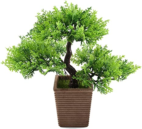 Amazon Com Gtidea 10 6 Inches Artificial Cedar Bonsai Trees Fake Potted Plants Indoor Evergreen Home Office Table Feng Shui Greenery Decor Home Kitchen