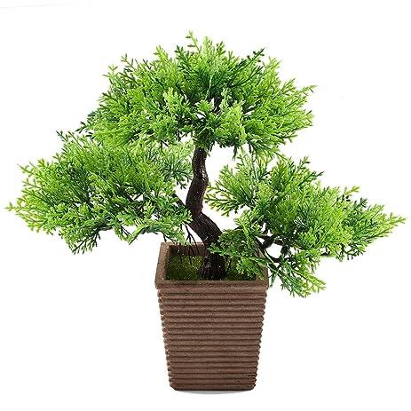 Amazon.com: GTidea 10.6 inch Artificial Cedar Bonsai Trees Fake ...