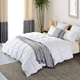 NP Goose Down Alternative Comforter Queen 90 x 90 Inch,Ultra Soft Brushed Microfiber, Quilt with Corner Tab for All Season Hypoallergenic Plush Mircofiber Comforter Duvet Insert