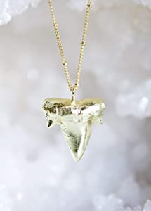 Shark Tooth Pendant Gold Necklace