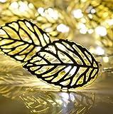 RLG Golden Metal Leaf String 20 Led Decorative Lights(Warm White 3-Meters)