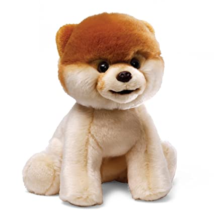 amazon com gund world s cutest dog boo stuffed animal plush