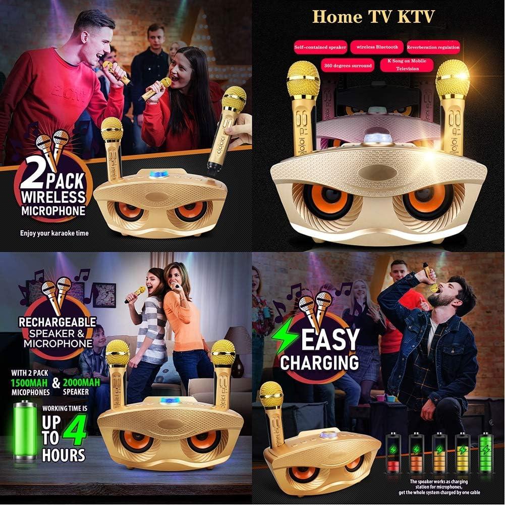 CHAN Qualitäts-Karaoke-Maschine, Beweglicher Drahtloser Karaoke Bluetooth Lautsprecher, Drahtloses Mikrofon Singen Maschine Mit 2 Mikrofone, Für Erwachsene Und Kinder A2