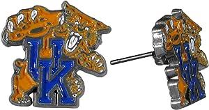 Kentucky Faux Leather Earrings Oval Earrings Teardrop {2} Kentucky Basketball Kentucky Wildcats University of Kentucky UK Earrings
