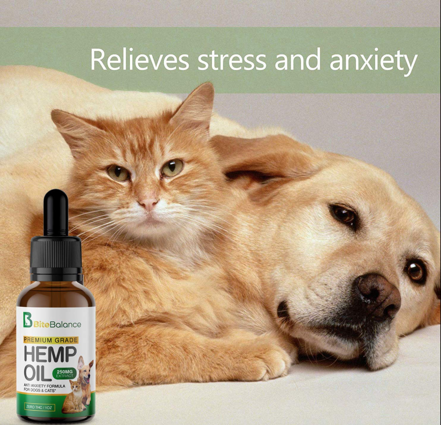 Hemp oil for cats - kattengekte.com, 71yHDgZHy L