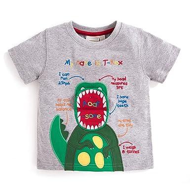 Amazon.com: Jojo Maman Bebe Roarsome T-Rex T-Shirt (6/12 ...