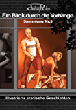 Reihe «Ein Blick durch die Vorhänge» mit 200 erotischen Geschichten. Sammelband Nr. 3 (Erzählungen 51-75): Illustrierte Sexgeschichten, die Ihre erotischen Fantasien anregen werden