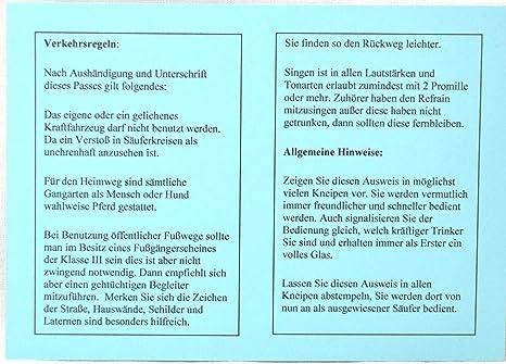Prokion Universal Hundesitz Auto 2 in 1 Autositzbezug f/ür Hunde Ideal f/ür kleine Hunde und Mittlere Hunde mit gratis Hundegurt f/ürs Auto!