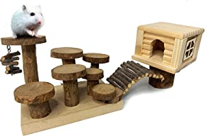 Natural Wooden Hamster Playground Activity Climb Platform Gerbil Houses and Hideouts Dwarf Mice Apple Wood Chewing Toys Hut Castle with Bridge