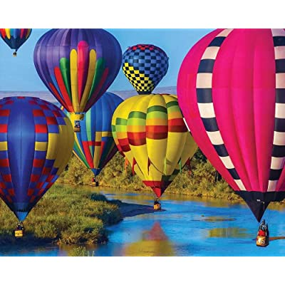 Springbok 350 Piece Jigsaw Puzzle Take Flight: Toys & Games