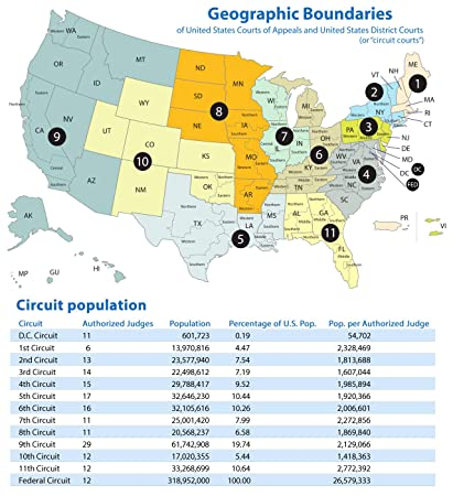 Amazon.com: Home Comforts Laminated Map - Map US Circuit Courts ...