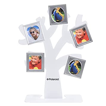 Amazoncom Polaroid Family Tree Frame Tree With Stand Five