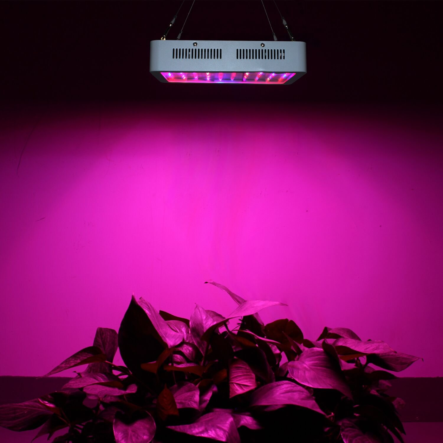 RYSA LIGHT LED Indoor Grow Light 1000W Full Spectrum Double Chips Growing Lamps with UV IR for Garden Plants Veg Flower Hydroponic Greenhouse by RYSA LIGHT (Image #9)