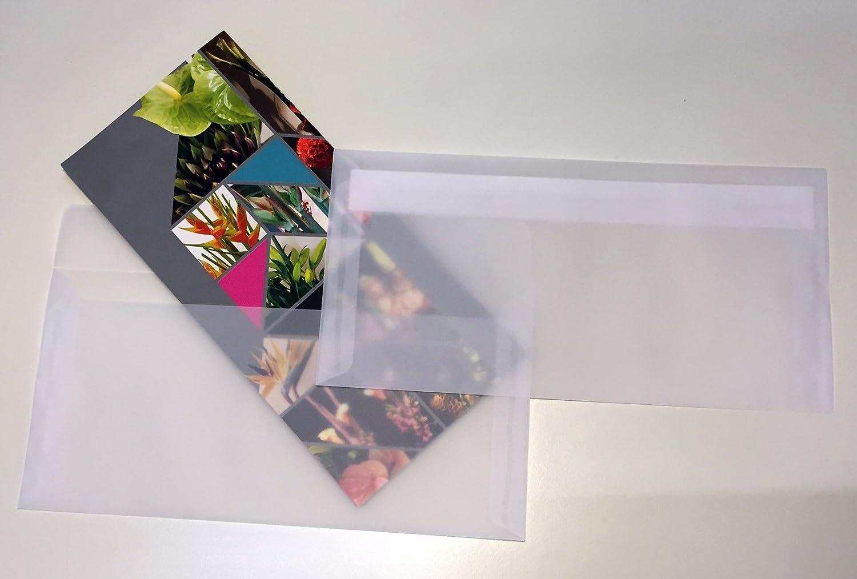 220 x 110 mm chiusura autoadesiva pacchetto da 25 pezzi Buste per lettera trasparenti