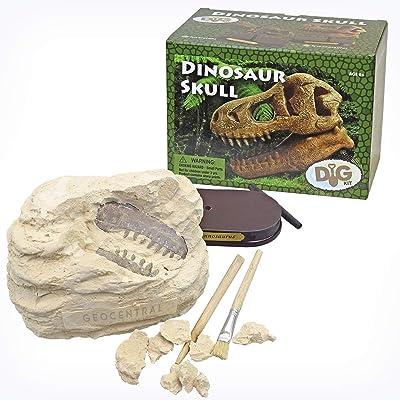 GeoCentral Dinosaur Skull Dig Kit: Toys & Games