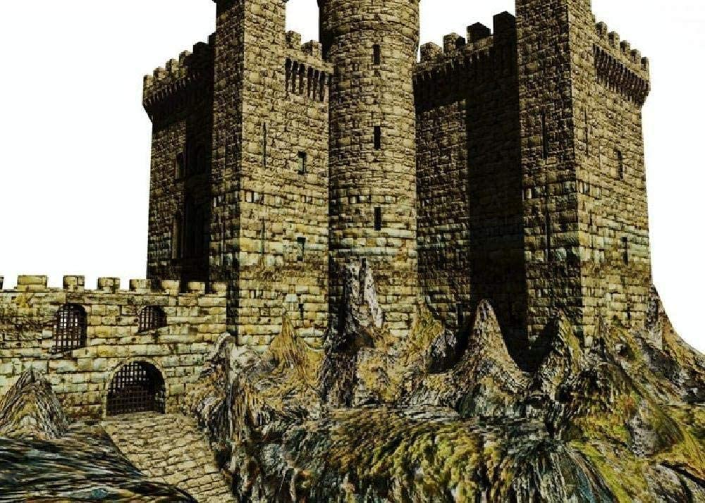 WQEFFTRW HD Castle Stone 3D Graphics Photo 1000 Puzzle Juguetes educativos para niños Desafío Brainpower Rompecabezas de Madera