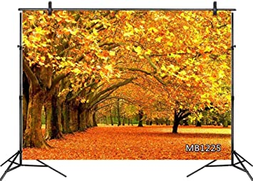 Zhy Autumn Nature Scenery Backdrop 7x5ft Yellow Leaves Trees Clear Lake Background for Photography Harvest Celebration Party Decor Baby Shower Newborn Portrait Artistic Photo Props 160