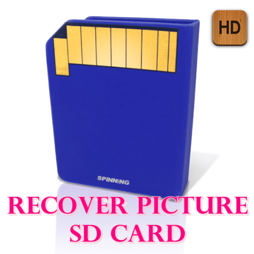 recover picture sd card