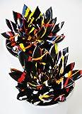 Palmenmann Echeveria (bunt) schwarz - Echeveria