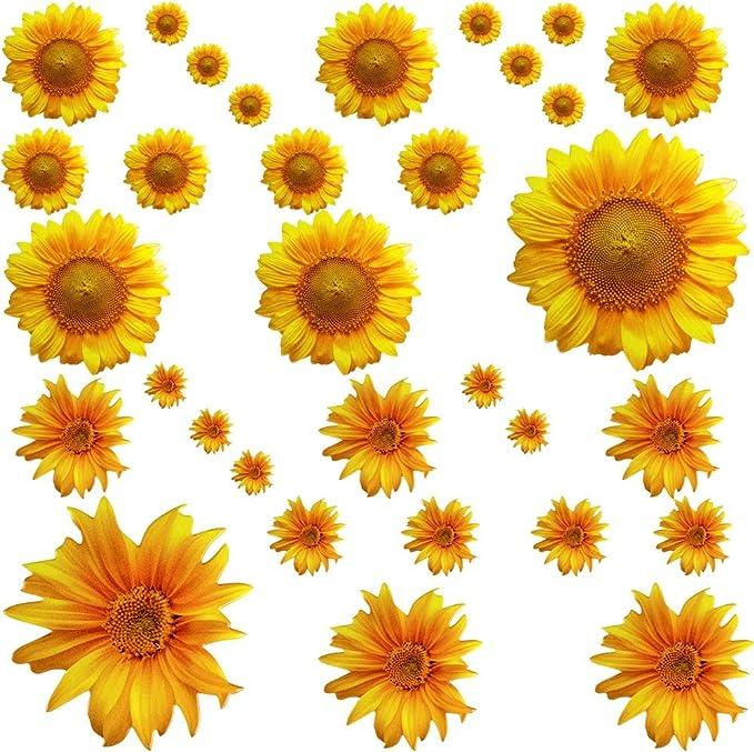 Wall Tattoo Sticker Sticker Flowers Blossoms Wall Door 5er Set incl Squeegee w58