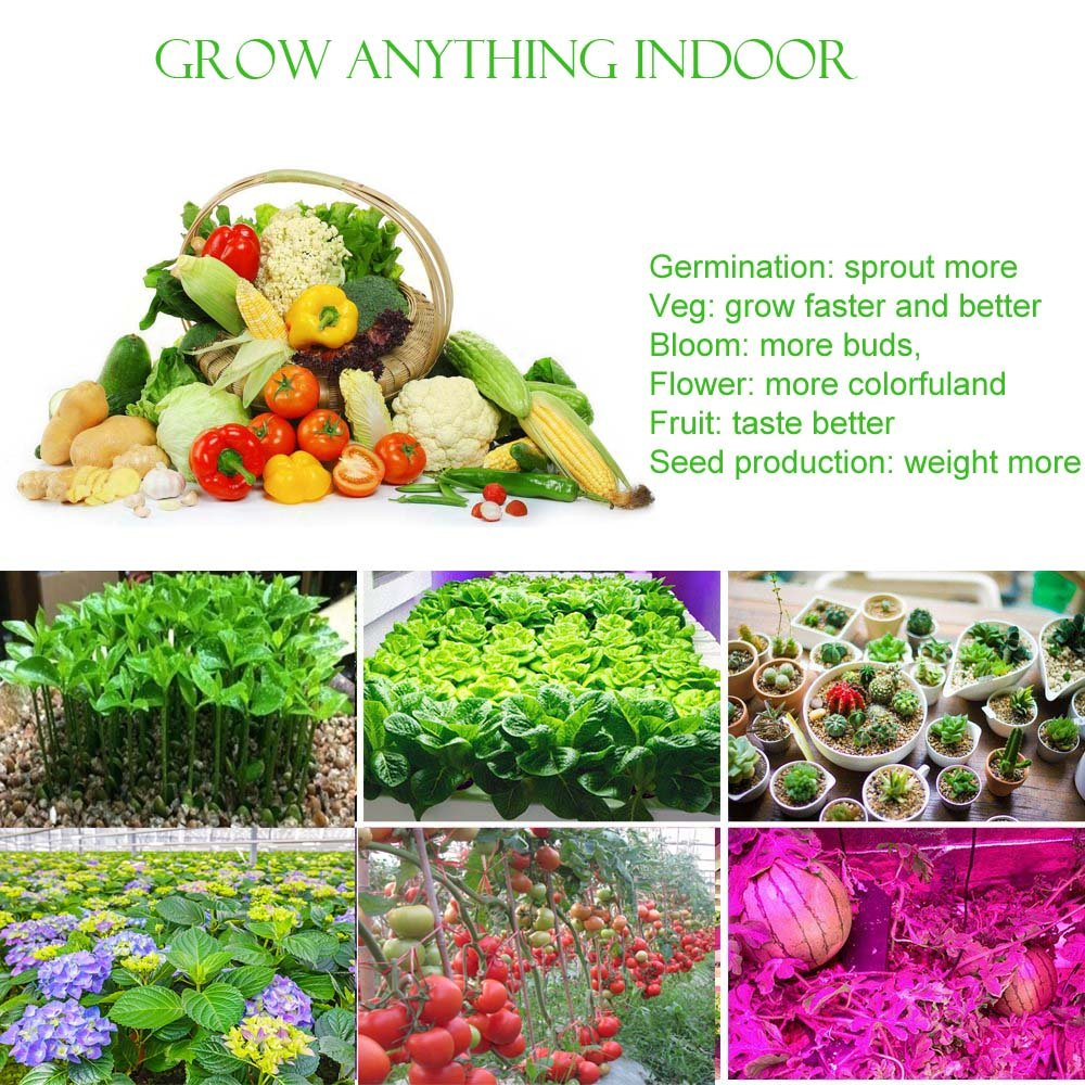 JCBritw LED Grow Light Panel Full Spectrum with Veg Bloom Dual Switch 30W Plus Plants Growing Lamps Aluminum Made with Daisy Chain for Indoor Plants Hydroponic Greenhouse Veg and Flower by JCBritw (Image #8)