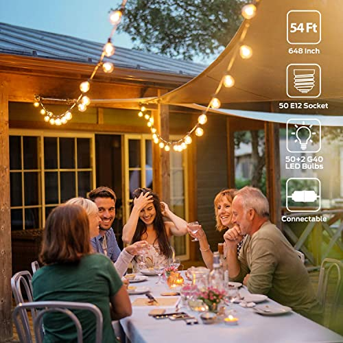 LED Globe String Lights Outdoor with 52 Clear G40 Bulbs 2 Spare , 54 Ft Hanging String Lights Connectable Waterproof for Indoor Bedroom Patio Garden Porch Wedding Party Christmas, 1W Bulb, Black Wire