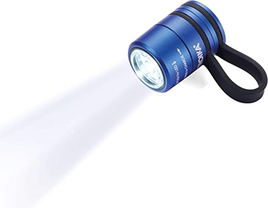 Troïka DEL Lampe De Poche Lampe Lumière Jogging Sport Lampe Eco Run tor90 BL 19