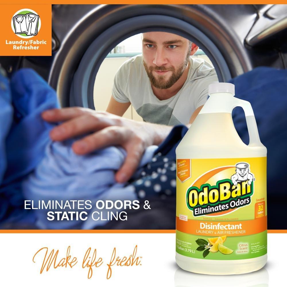 OdoBan 1 Gal Concentrate 2-Pack, Citrus Scent - Odor Eliminator, Disinfectant, Flood Fire Water Restoration by OdoBan (Image #3)