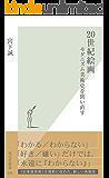 20世紀絵画~モダニズム美術史を問い直す~ (光文社新書)