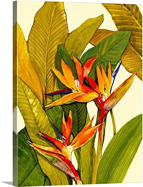 Tropical Bird Of Paradise Canvas Wall Art Print Tropical Artwork Posters Prints