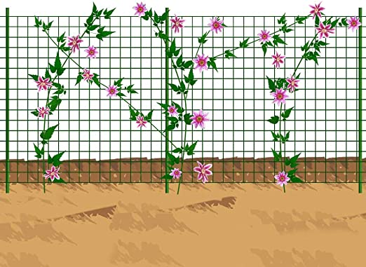 Mr Garden Enrejado de Malla de Alambre, Enrejado para Plantas ...