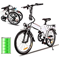 Miageek Folding Aluminum Electric Bike with 36V Removable Lithium-Ion Battery Lightweight E-Bike with 250W Powerful Motor and Fast Battery Charger