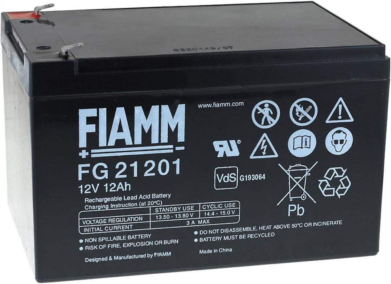 Fiamm FG21202 - Batería de plomo ácido, 12 Ah, 12 V