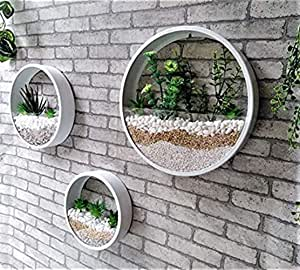 Set of 3 Wall Plant White Planter Terrarium, Wall Metal Vase, Round Fairy Garden, Wall Hanging Wall Planter, Home Decoration Plants