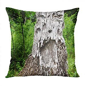 Moladika Throw Pillow Cover Square Halloween Tree Human Bearded Face Open Mouth Coconut Trunk Natural Gray Cushion Home Decor Living Room Bedroom Office Polyester Pillowcase 18 x 18 Inch