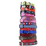 Waterproof And Odorproof Dog Collar - 4 Sizes & 17 Patterns - Made In The USA