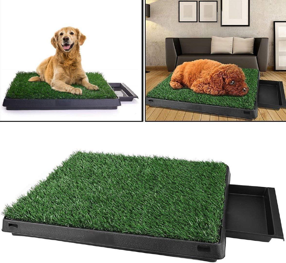 Pujuas - Inodoro para Perros, Inodoro para Perros, Base de Entrenamiento con césped Artificial 63 x 50 x 7 cm (Largo x Ancho x Alto)