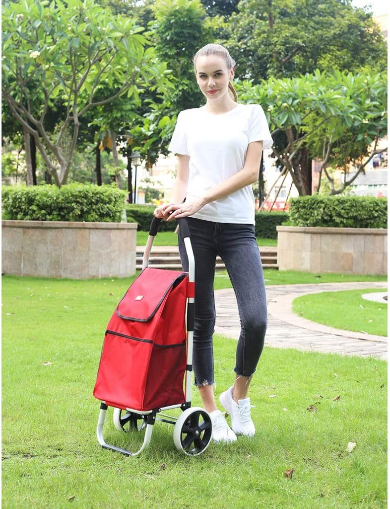 Color : B LGQ-LIFE Light Folding Shopping Cart,Warehouse Factory Pull Goods Handling Trolleys Outdoor Camping Barbecue Gardening