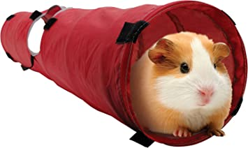Amazon living world pet tunnel redgrey guinea pig tunnel living world pet tunnel redgrey sciox Image collections