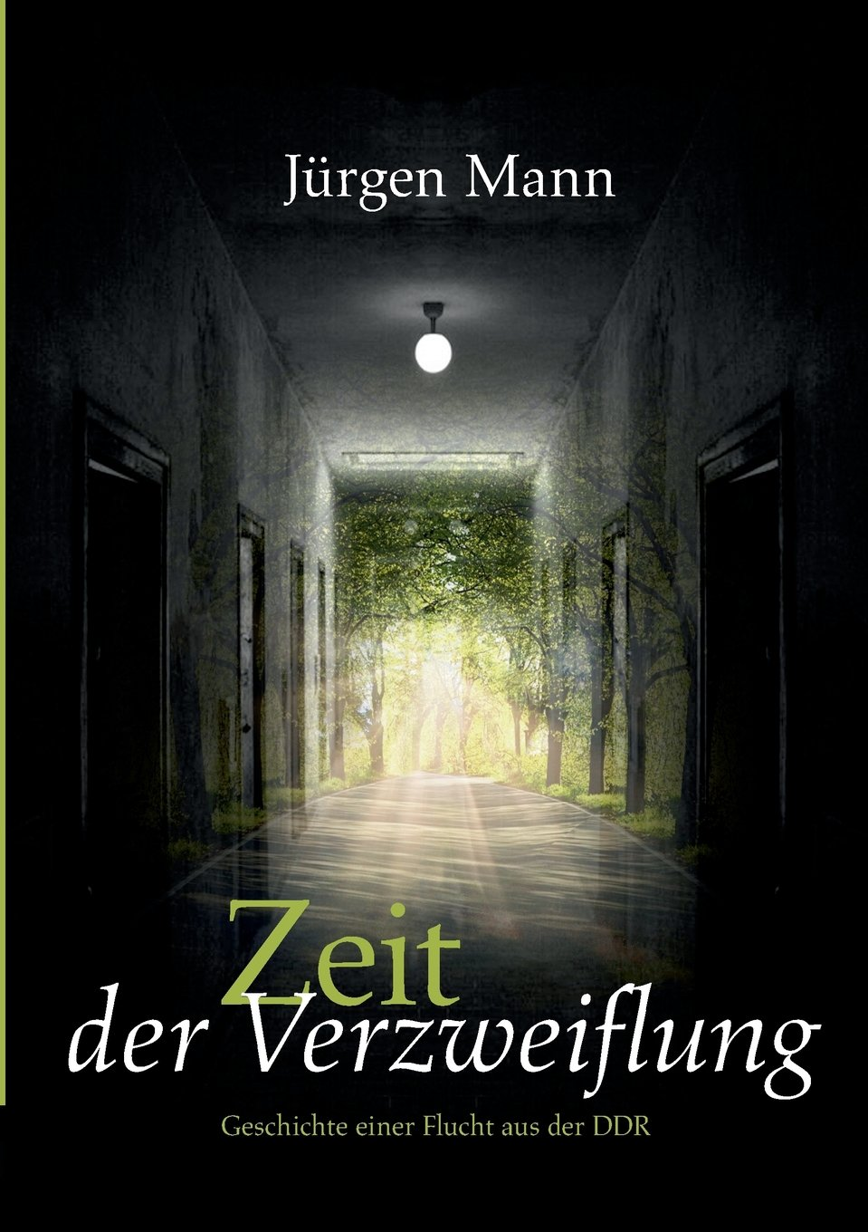 Verzweiflung (German Edition)