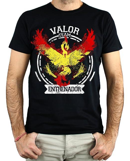 PLANETACAMISETA Camiseta Pokemon Team Valor: Amazon.es: Ropa y accesorios