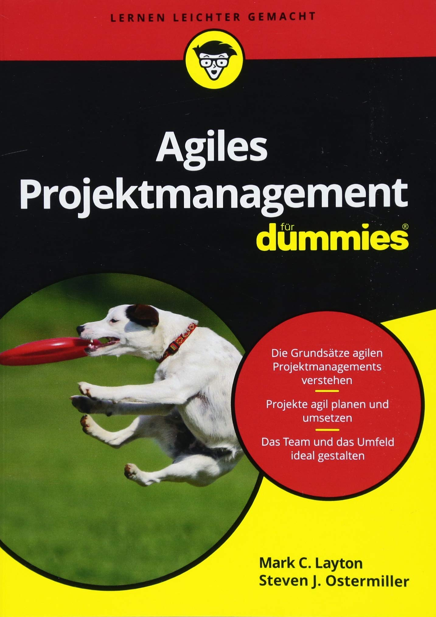 agiles-projektmanagement-fr-dummies