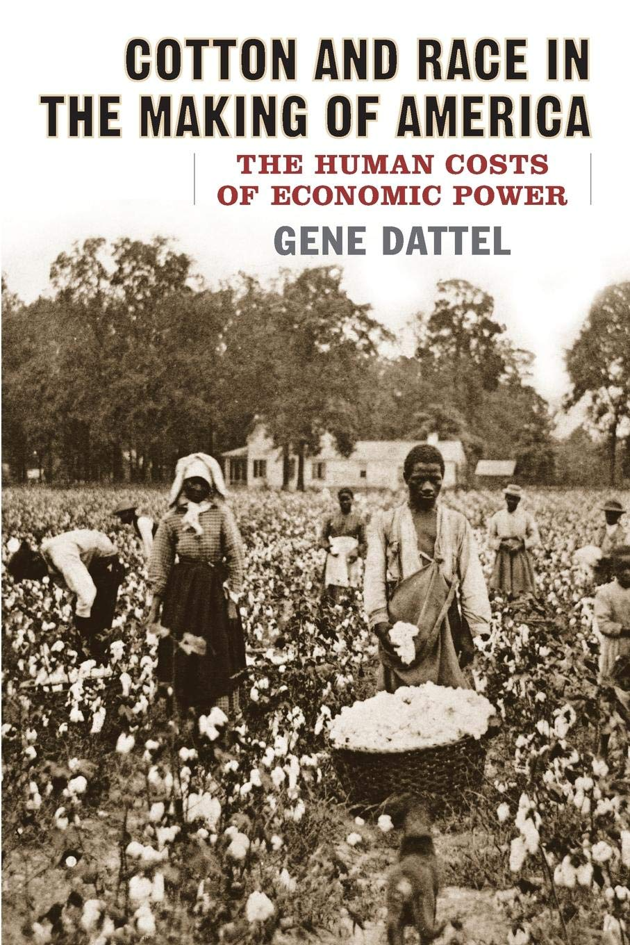 Cotton and Race in the Making of America: The Human Costs of ...